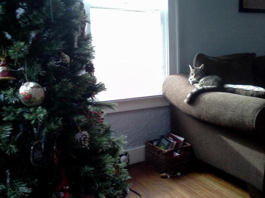 Tree plus Cat